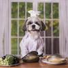 A Restaurant Tail: How Pumpkin Saved My Pet From Surgery
